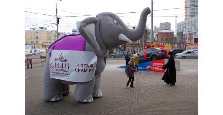 """Пневмофигура """"Слон"""" зазывает прохожих посетить салон """"Сиам"""""""