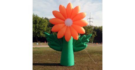 Надувной цветок на дне Агаповского района