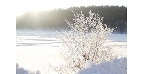 Красивый вид открывается у Шиловского водохранилища