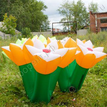 Надувные цветы на полянке