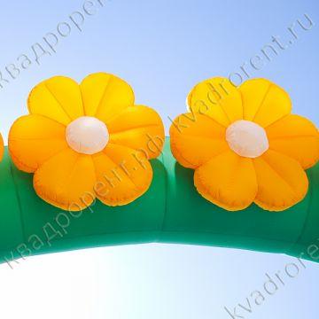 Цветы на арке