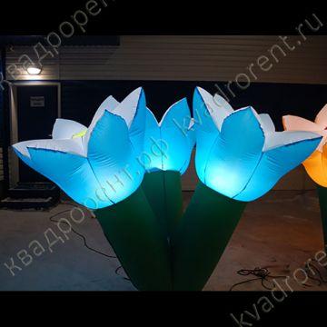 Светящиеся надувные цветы